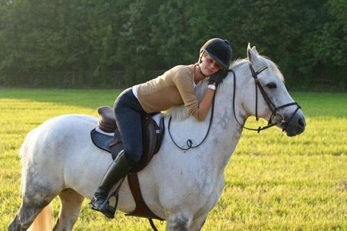 Ngựa trung thành và thông minh hơn bạn nghĩ