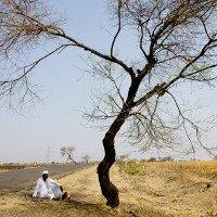 Người đi bộ không nhấc được chân vì nắng nóng làm đường nóng chảy ở Ấn Độ