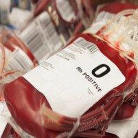 Người nhóm máu O dễ tử vong hơn khi bị chấn thương