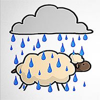 Nguyên nhân lông cừu không bị xẹp khi trời mưa
