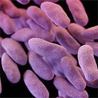 Nhà khoa học Thụy Điển cảnh báo dịch siêu khuẩn tại bệnh viện Việt Nam