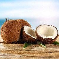 Nhà làm từ quả dừa sẽ giúp con người giảm mối lo về thảm họa thiên tai