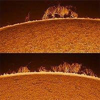 """Nhà thiên văn học người Anh chụp cận cảnh được """"rắn Mặt Trời"""""""