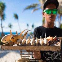 Nhờ có cá mập, đảo ngọc du lịch tại Philippines hồi sinh thần kì