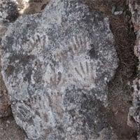 Nhóm khảo cổ tìm thấy