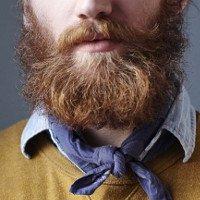 Những bộ râu trau chuốt của nam giới có thể còn bẩn hơn cả toilet