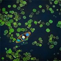 Những bức ảnh chiến thắng Cuộc thi ảnh toàn cầu 2021