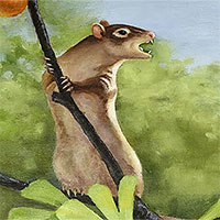 Những con chuột từng lang thang trên Trái đất hàng triệu năm trước cùng với khủng long