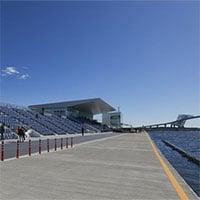 Những con hàu đe dọa một địa điểm tổ chức Olympic Tokyo 2020