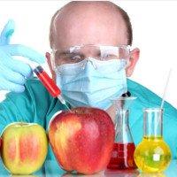 Những điều bạn nên biết về thực phẩm biến đổi gene GMO