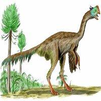 Những loài khủng long hình thù