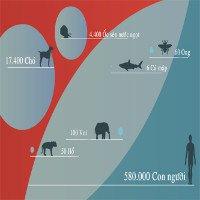 Những loài vật giết người nhiều nhất thế giới
