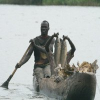 Những sự thực khủng khiếp về cuộc sống trong đầm lầy