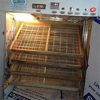Nông dân 8X chế tạo máy ấp trứng tỷ lệ nở 98%