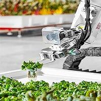 Nông trại tự động đầu tiên trên thế giới do robot quản lý