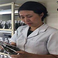 Nữ tiến sĩ Việt tách chất tăng cường sinh lực từ cây thuốc