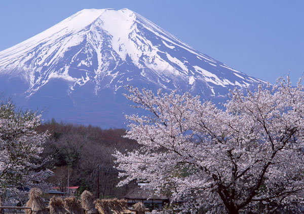Núi Phú Sĩ có thể đổ sập trong động đất