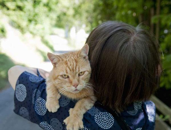 Nuôi mèo giúp giảm nguy cơ ung thư