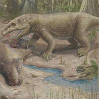 Phải mất 10 triệu năm sự sống trên Trái đất mới có thể phục hồi sau sự kiện