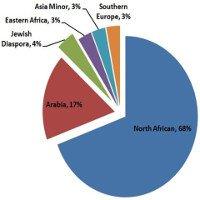 Phân tích ADN sốc: Phần lớn người Ai Cập không phải gốc Arab