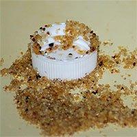 Phát hành vi sử dụng công cụ tinh vi ở kiến lửa