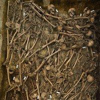 Phát hiện chấn động từ ngôi mộ tập thể chiến binh thế kỷ 17 ở Đức