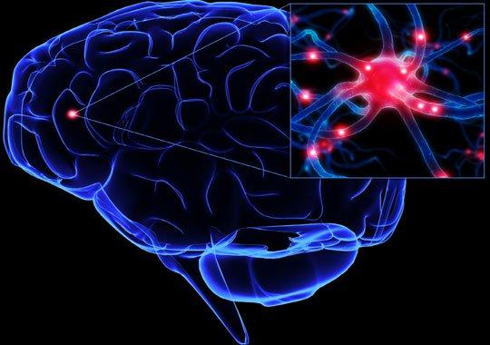 Phát hiện chùm protein dẫn tới 130 bệnh về não