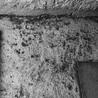 Phát hiện con đường lát đá 2.000 năm tuổi