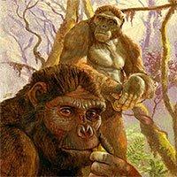 Phát hiện gây sốc: Loài 4,4 triệu tuổi biến đổi