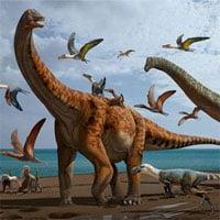 Phát hiện hai loài khủng long to gần bằng cá voi xanh ở Trung Quốc