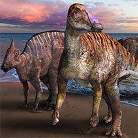 Phát hiện hóa thạch cực hiếm tiết lộ khủng long mỏ vịt mới