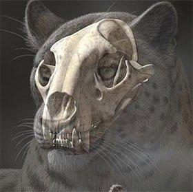 Phát hiện hóa thạch họ mèo lâu đời nhất ở Tây Tạng