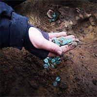 Phát hiện kho tiền vàng cuối thời trung cổ ở Hungary
