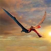 Phát hiện loài dực long lớn nhất Australia, sải cánh lên tới 7m