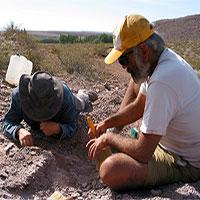 Phát hiện loài khủng long chưa từng được biết tới ở Argentina
