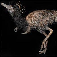 Phát hiện loài khủng long có móng vuốt kỳ dị