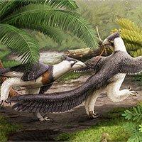 Phát hiện loài khủng long lạ, giống sinh vật huyền bí