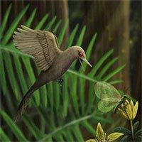 Phát hiện loài khủng long mới siêu bé, chỉ dài 5cm