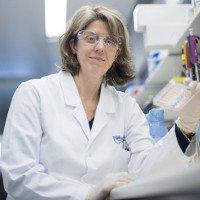 Phát hiện loại protein mới có thể hủy diệt tế bào ung thư