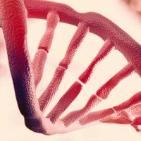 Phát hiện lớp thông tin thứ hai ẩn trong DNA