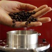 Phát hiện mới về chất giảm đau trong cà phê