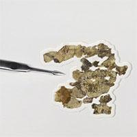Phát hiện mới về cuộn giấy Biển Chết ở
