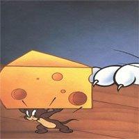 Phát hiện món ăn khoái khẩu thật sự của chuột Jerry, phô mai ư? Nhầm to rồi nhé!