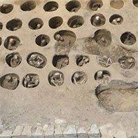 Phát hiện nghĩa địa chôn hàng nghìn hài cốt ở Nhật Bản