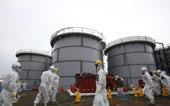 Phát hiện phóng xạ Fukushima ở bờ biển Canada