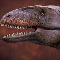 Phát hiện tàn tích quái vật ăn thịt khổng lồ dài 8m, nặng hơn 1 tấn