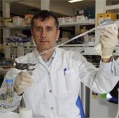 Phát hiện tế bào gốc