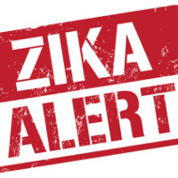 Phát hiện thêm 20 loại muỗi mang virus Zika