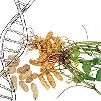 Phát hiện thêm các loài thực vật biến đổi gene tự nhiên