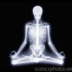 Phát hiện thú vị về cơ thể con người